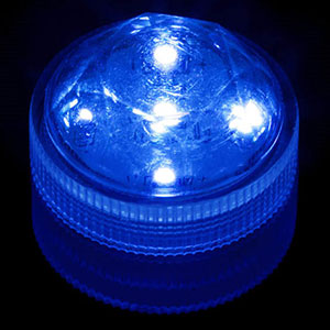 ADD - Ultra-Bright BLUE 5-LED Light
